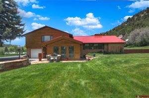 Photo of 18521 Hwy 145, Dolores, CO 81323 (MLS # 755622)