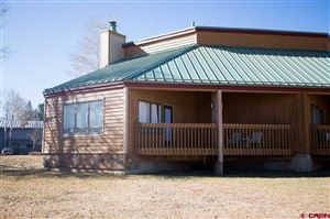 Photo of 247 Davis Cup Drive, Pagosa Springs, CO 81147 (MLS # 764630)