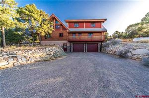Photo of 270 E Pinon Road, Ridgway, CO 81432 (MLS # 757632)