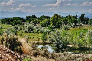 Photo of TBD 62.60 Road, Montrose, CO 81403 (MLS # 752639)