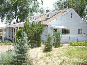Photo of 26016 Cactus Park Road, Cedaredge, CO 81413 (MLS # 760647)