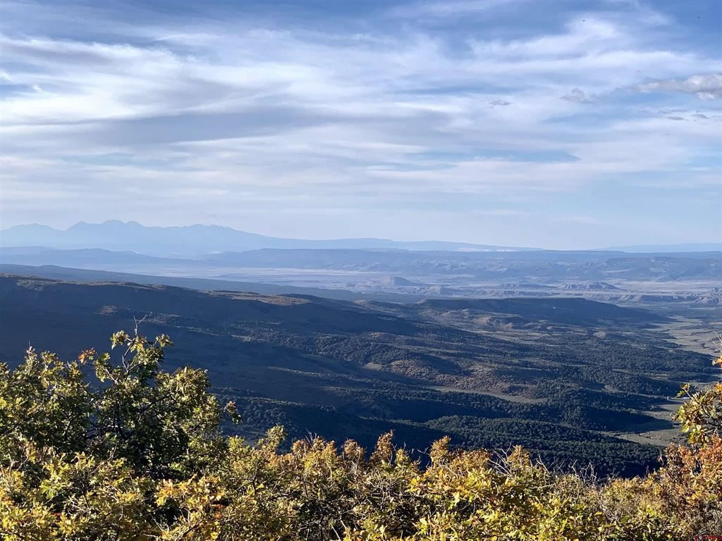 Photo for 10050 CR 29, Lot # 53, Cahone, CO 81320 (MLS # 784650)