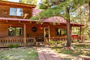 Photo of 351 W Golf Place, Pagosa Springs, CO 81147 (MLS # 762656)