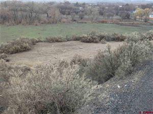 Photo of TBD Oatman, Eckert, CO 81418 (MLS # 755663)