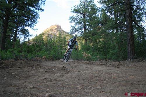 Tiny photo for (Lot 64) 564 Tipple Avenue, Durango, CO 81301 (MLS # 773669)