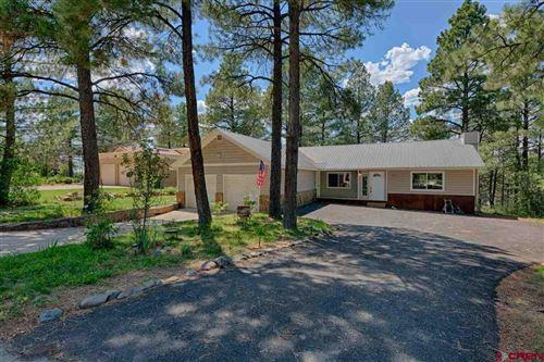Photo of 317 Handicap Avenue, Pagosa Springs, CO 81147 (MLS # 771670)