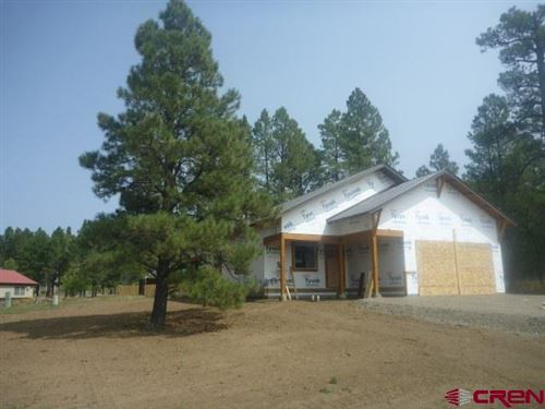 Photo of 44 S Driver Court, Pagosa Springs, CO 81147 (MLS # 774675)