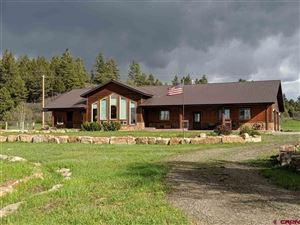 Photo of 968 Scenic Avenue, Pagosa Springs, CO 81147 (MLS # 757677)