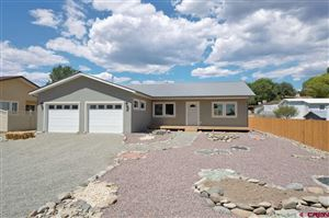 Photo of 400 Maple Drive, Hotchkiss, CO 81419 (MLS # 752679)