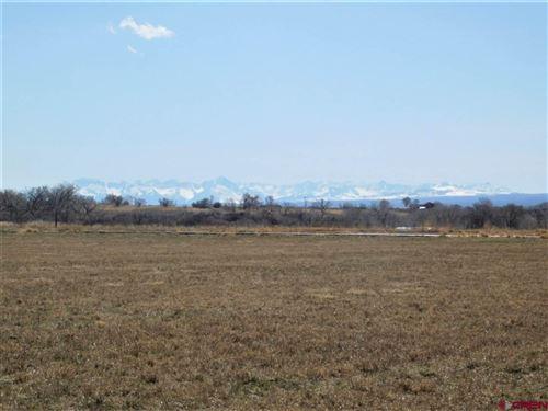 Photo of 6506 5600 Road, Olathe, CO 81425 (MLS # 767682)