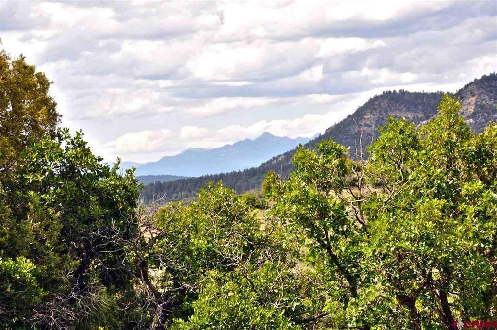 Photo of 841 Archuleta Mesa Place, Pagosa Springs, CO 81147 (MLS # 783683)