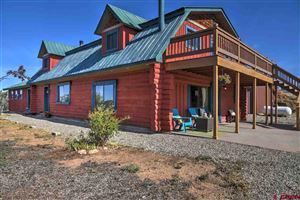 Photo of 28143 Highway 184, Dolores, CO 81323 (MLS # 757687)