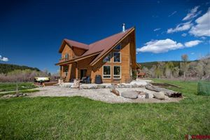 Photo of 340 Red Ryder Circle, Pagosa Springs, CO 81147 (MLS # 757688)