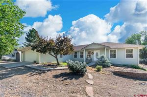 Photo of 615 SW 8th Avenue, Cedaredge, CO 81413 (MLS # 761693)