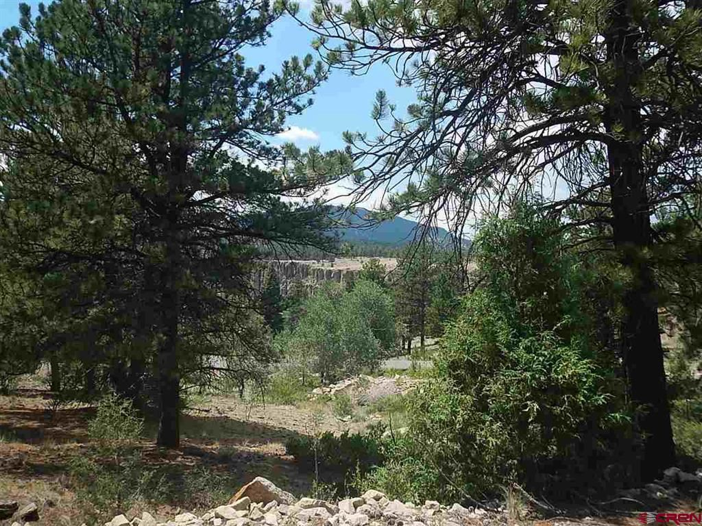 Photo of 545 Church Creek Drive, South Fork, CO 81154 (MLS # 747698)