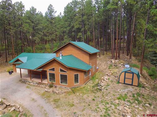 Photo of 179 Berry Drive, Bayfield, CO 81122 (MLS # 774700)