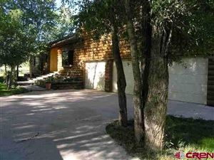 Photo of 22900 Hwy 145, Dolores, CO 81323 (MLS # 752705)