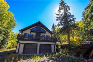 Photo of 8760 Highway 62, Placerville, CO 81430 (MLS # 761706)