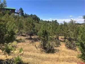 Photo of Lot 4 Hidden Valley Drive, Paonia, CO 81428 (MLS # 764706)