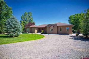 Photo of 8633 Saddle Ridge Road, Austin, CO 81410 (MLS # 760710)