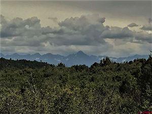 Photo of Lot 63 Barnes Point Drive, Montrose, CO 81403 (MLS # 748714)