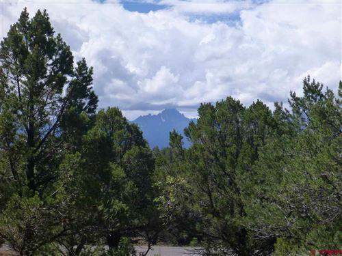 Photo of 834 Marmot, Ridgway, CO 81432 (MLS # 772725)