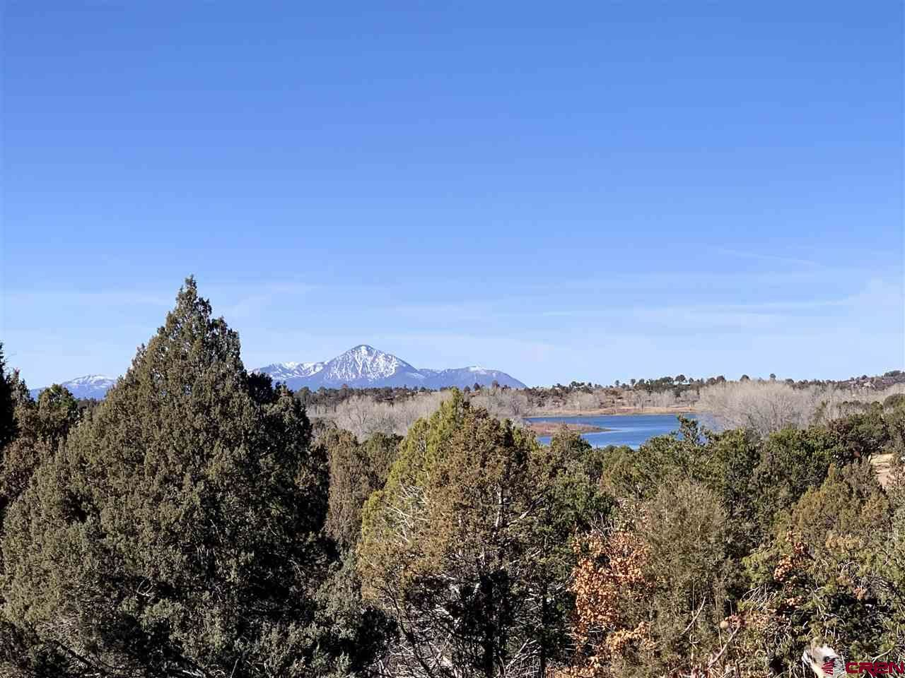 Photo for TBD Road P.2, Mancos, CO 81328 (MLS # 767728)