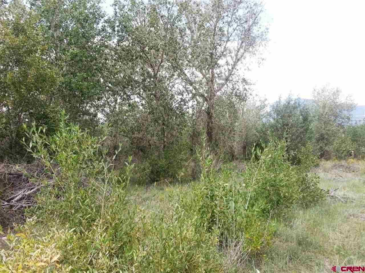 Photo of tbd Shoshone Trail, South Fork, CO 81154 (MLS # 770735)