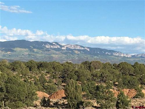 Photo of TBD Tiyoweh Trail, Montrose, CO 81403 (MLS # 750738)