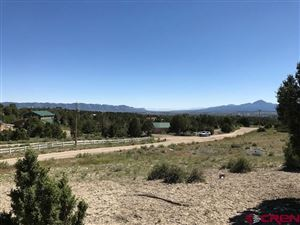 Photo of TBD Road 28.4, Dolores, CO 81323 (MLS # 758739)