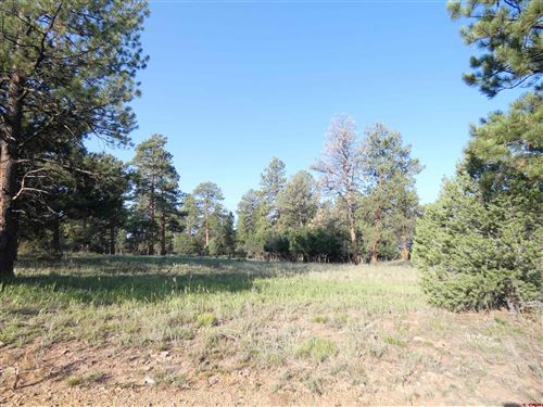 Photo of 211 S Badger Trail, Ridgway, CO 81432 (MLS # 785758)