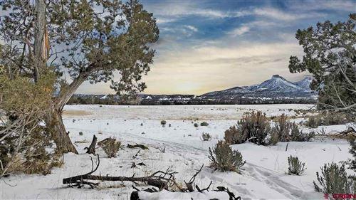 Tiny photo for 11499 Road 34, Mancos, CO 81328 (MLS # 778761)
