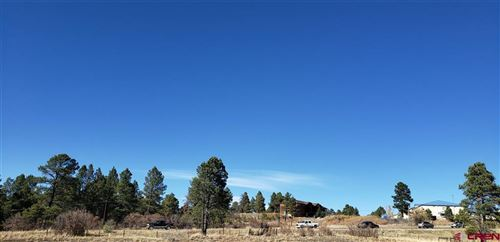 Photo of 169 Ace Court, Pagosa Springs, CO 81147 (MLS # 775763)