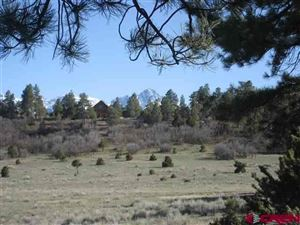 Photo of 208 White Tail Ln., Ridgway, CO 81432 (MLS # 758767)