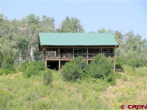 Photo of 4550 Forest Service Road 814, Crawford, CO 81415 (MLS # 749783)