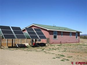 Photo of 20100 Road 29.2, Dolores, CO 81323 (MLS # 742790)