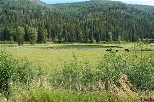 Tiny photo for 16910 Road 40.5, Dolores, CO 81323 (MLS # 761793)