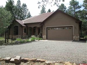Photo of 173 S Badger Trail, Ridgway, CO 81432 (MLS # 761796)