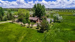Photo of 14242 Rd 28, Dolores, CO 81323 (MLS # 758807)