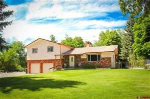 Photo of 590 SW 2nd Court, Cedaredge, CO 81413 (MLS # 761817)