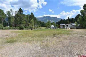 Photo of 419 Marguerite Drive, Ridgway, CO 81432 (MLS # 753820)