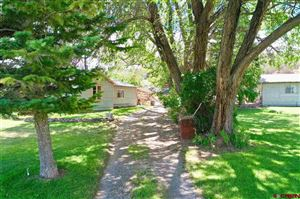 Photo of 17730 Paradox Trail, Montrose, CO 81403 (MLS # 759822)
