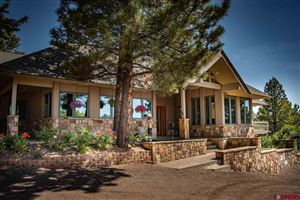 Photo of 231 Crestview Dr., Pagosa Springs, CO 81147 (MLS # 761825)