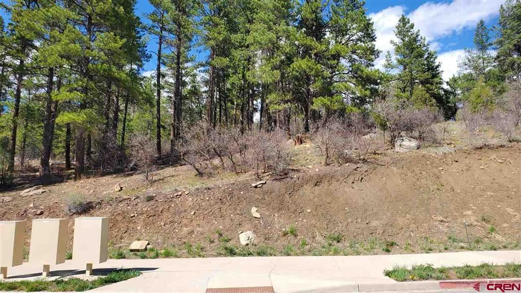 Photo for 1000 Twin Buttes Ave, Durango, CO 81301 (MLS # 781829)
