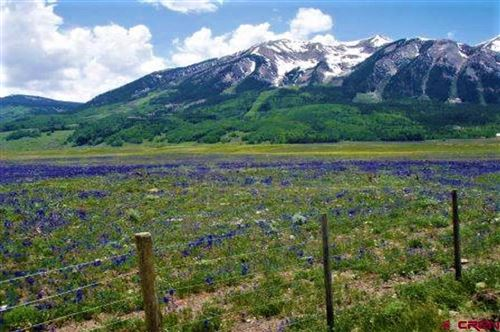 Photo of 734 S Avion Drive, Crested Butte, CO 81224 (MLS # 769830)