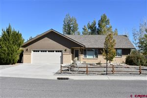 Photo of 1725 Hickory, Montrose, CO 81401 (MLS # 763831)