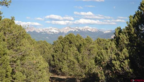 Photo of 212 Fisher Canyon Drive, Ridgway, CO 81432 (MLS # 774833)