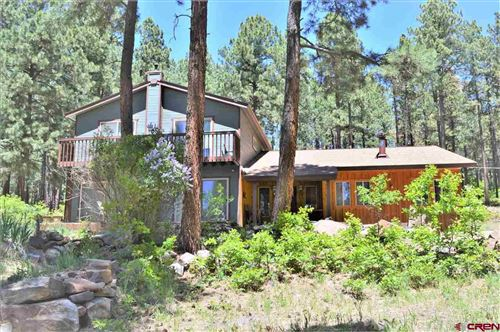 Photo of 37 Berry Drive, Bayfield, CO 81122 (MLS # 769851)