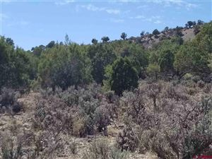 Tiny photo for TBD Road 35, Mancos, CO 81328 (MLS # 749852)