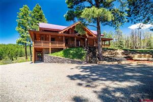 Photo of 246 Solitude Place, Pagosa Springs, CO 81147 (MLS # 758861)